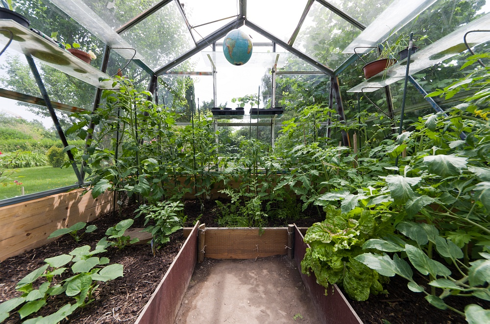 hamburg und mehr garten vitaminbunker bepflanzung. Black Bedroom Furniture Sets. Home Design Ideas